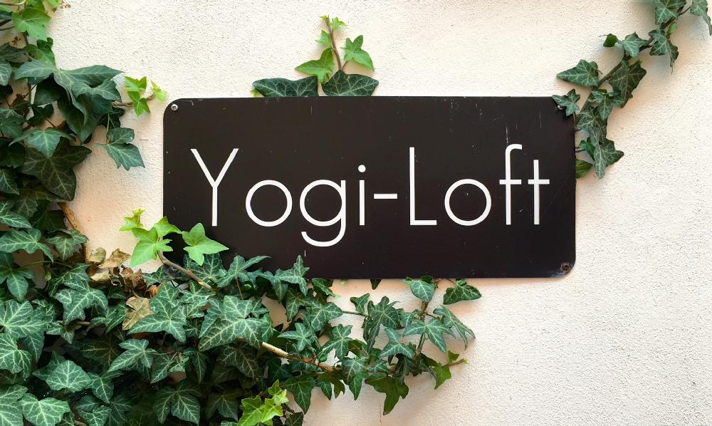 yogi-loft